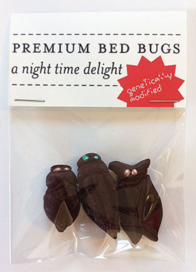 chocolate bed bugs